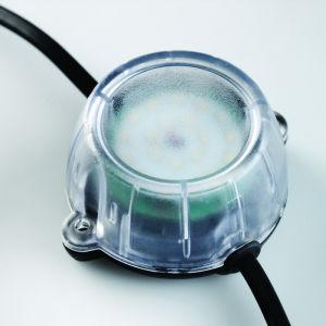 22M LED Festoon Lighting Kit 110V C/W Guards & Lamps