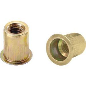 6mm Threaded Insert Nut (Sold Individually)